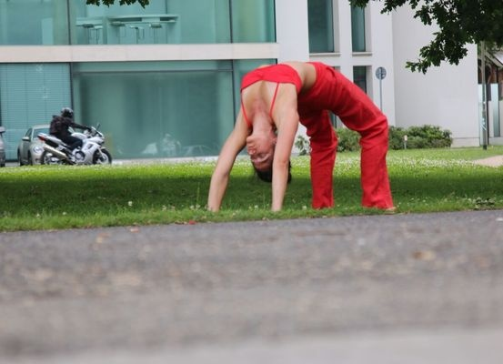 Large_yogawheel