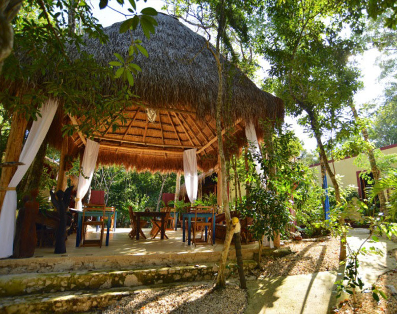 Yoga, Jungle & Beach Retreat in Tulum with Lori Du Bois