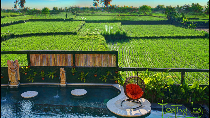 Wide_large_rice-fields-pool-bali