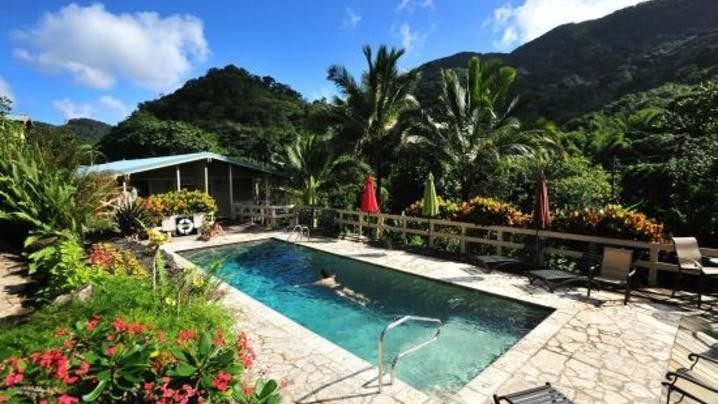 Wide_large_puertorico_pool