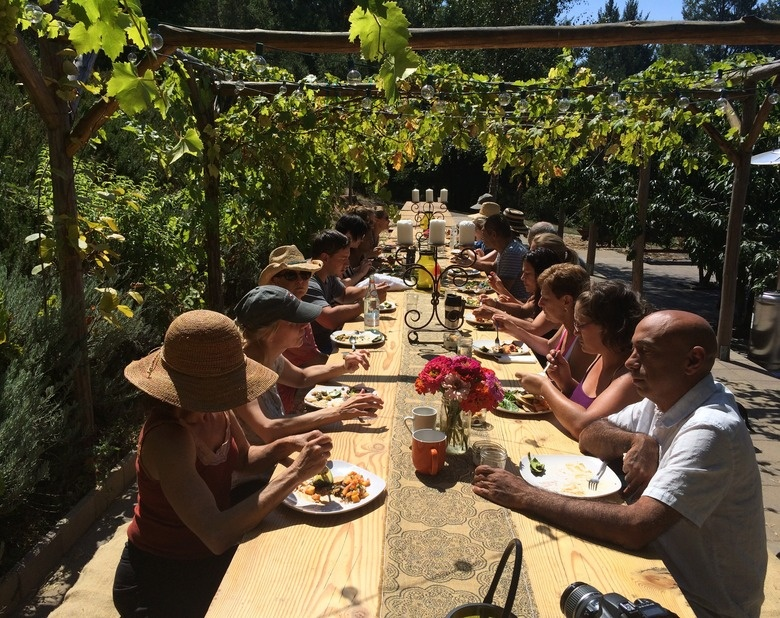 Farm to Table SonOMa Yoga Retreat with Lisa Mitchell