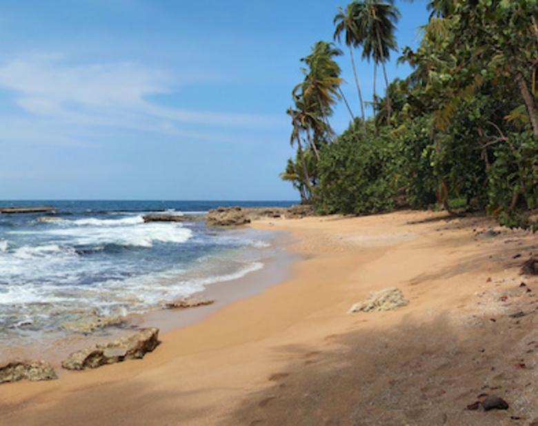 New_super_caribbean